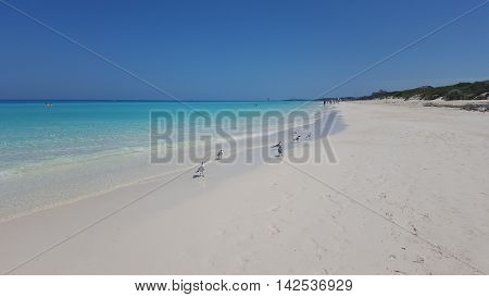 Cuba - Caribbean beach Playa Megano in Playas del Este part of Havana Province