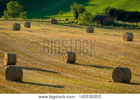 Bales In France