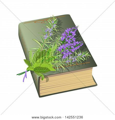 Old book with bunch of flowers. Sage and rosemary. Vector illustration.