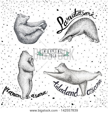 Set of Vector illustrations fun bears isolated on vintage background. Print posture morning practice asana pose yoga. Eps 10.