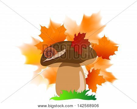 Cartoon brown boletus with snail and leaves