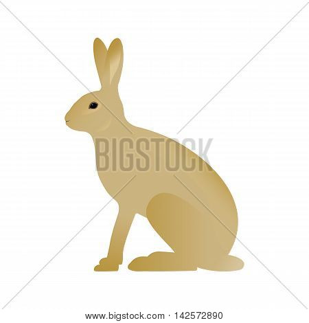 Vector illustration of a hare. Isolated on white background. Side view of the profile.