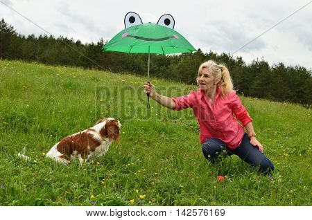 Protecting Doggy Of Rain