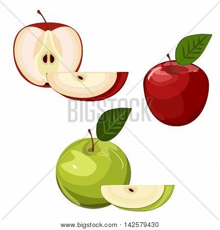 Ripe green and red apple with leaf and slice isolated vector. Set of red and green apple fruits with cut and green leaves. Vector sweet nature green and red apple fruit fresh juicy organic food.