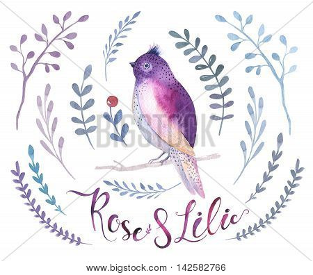 Watercolor boho flower set and bird. Spring or summer decoration floral bohemian design. Watercolour isolated. foliage illustration with rose green leaf feather. Botanical aquarelle.