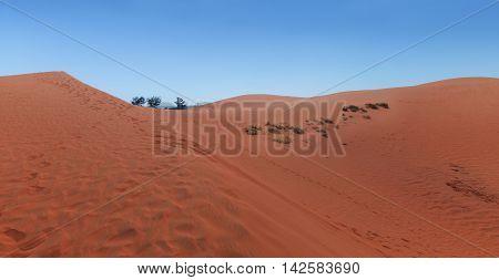 Red Sand Dunes In Mui Ne Village, Vietnam