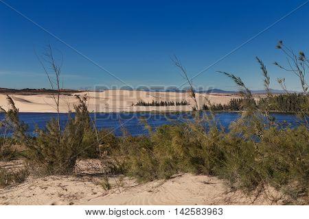 White Sand Dunes With Lake Trees At Mui Ne Vietnam