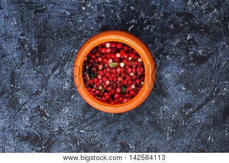 Foxberry In The Pot