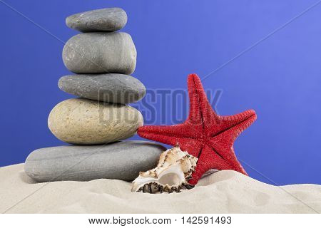 Vacation concept. Red starfish, seashell with nice stones put on each other against nice blue background.