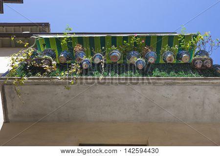 House balcony plenty of flowerpots Granada Spain. Low angle view