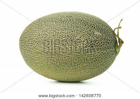 Whole Cantaloupe Melon
