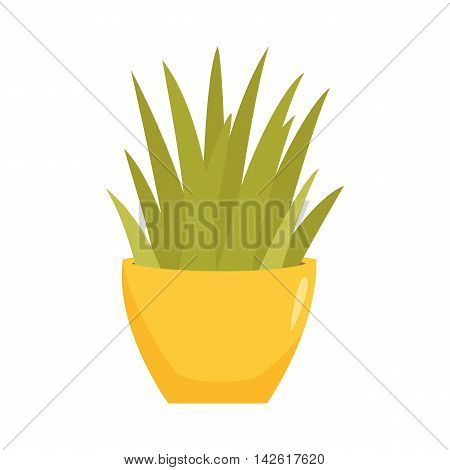 Sansevieriya in pot. Interior home and office potted plant. Houseplant cartoon vector illistration. Interior decoration. Flowerpot drowth and gardening.