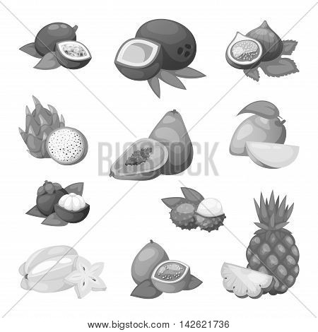 Mix of tropical fruits on white background. Composition of tropical and mediterranean fruits healthy food concepts decoration. Vitamin healthy eating food tropical fruits vegetarian nutrition.
