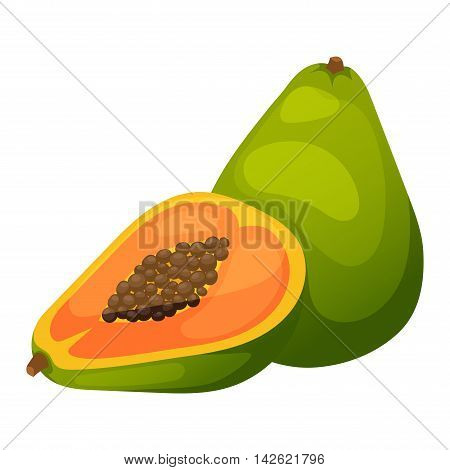 Fresh papaya fruit and cut one slice on white background. Vector papaya fruit orange exotic tasty cut dessert. Healthy color slice seed raw papaya fruit nature vitamins fragrant thailand.