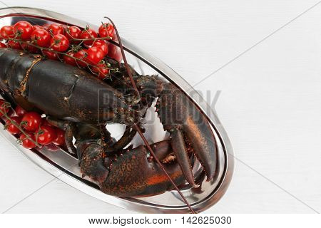 Big raw lobster in platewith tomatoes on table before cooking, close-up. Seafood preparing by original recipe, mediterranean cuisine, uncooked crayfish on white wooden background, copy space
