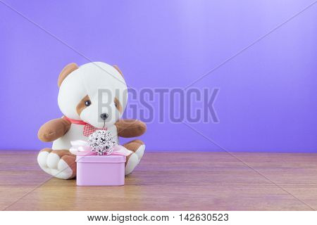bear doll with gift box on wood table and purple background