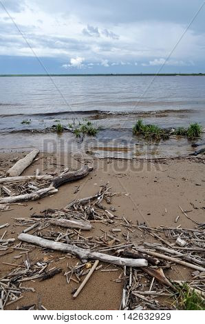 gray beach with driftwood and air rural landscape