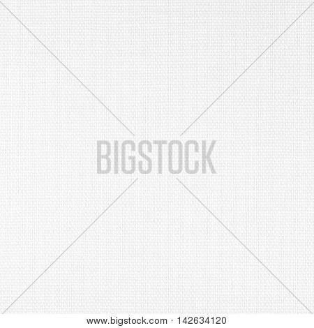 Vinyl Wallpaper Imitating Canvas. White Plastic Fiber Texture.