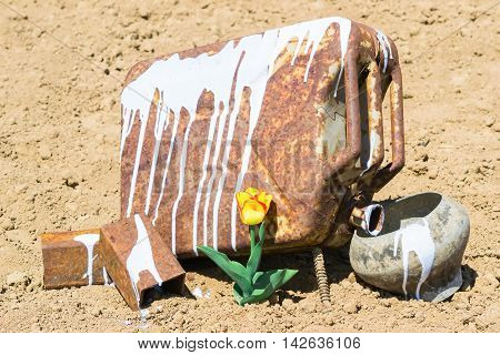 environmental struggle rusty cans and flower in the desert