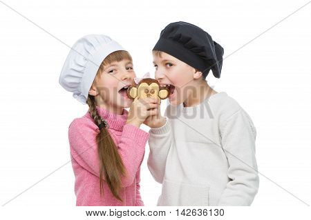 Beautiful boy and girl in chef hats biting monkey shape christmas cookie. Children standing isolated over white background.