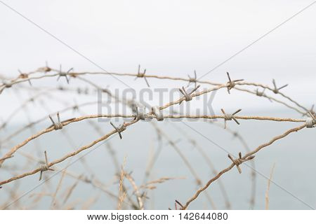 Detail of a barbed World War II France