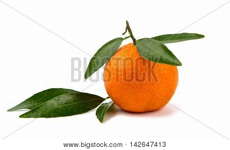 tangerines mandarine, orange on a white background