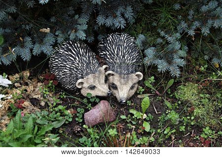Garden - The figures of hedgehogs in love introduced in landscaping.