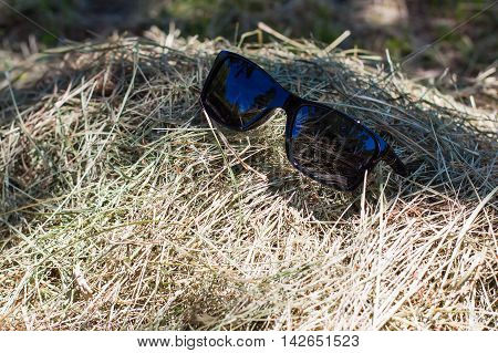 forgotten glasses in a haystack in the shade of trees
