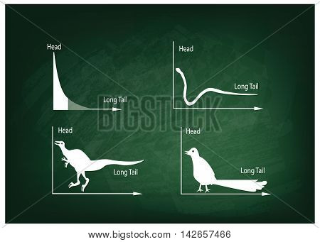 Charts and Graphs Illustration Animal Cartoon of Fat Tailed and Long Tailed Distributions Chart on A Chalkboard Background.
