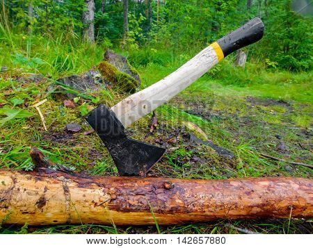 Axe for felling trees in the forest. The woodcutter's axe stuck in a tree. Rural life in the village. Ranch work.