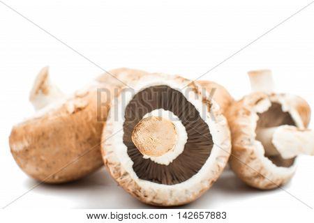 mushroom food, fungi, fungus on a white background