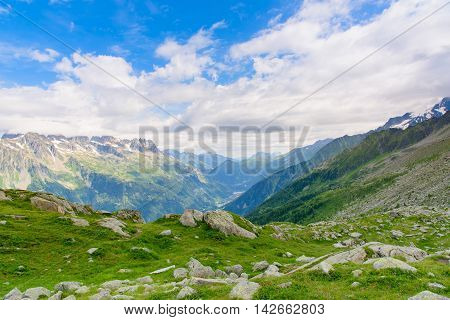 Beautiful View of Mont Blanc Massif with the grass and little flower as forgroundChamonixFrance