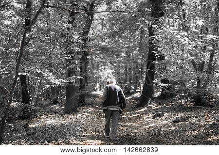 Old Man Walk In The Forest