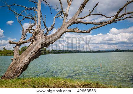 View of the Jarohnevicky pond near the city Hodonin in Moravia Czech Republic