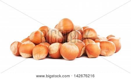 hazelnuts in a shell, isolated on white background