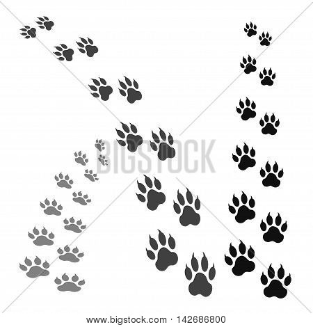 paw print isolated on white background .