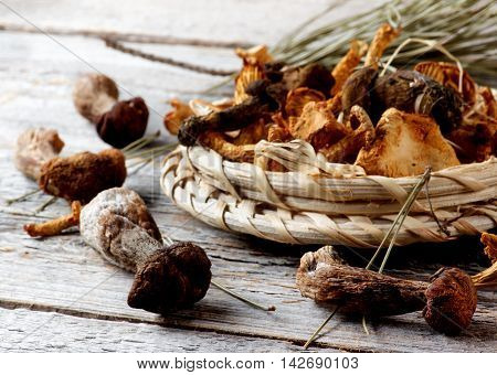 Arrangement of Forest Dried Mushrooms with Chanterelles Porcini Boletus Mushrooms and Dry Stems closeup Rustic Wooden background. Focus on Foreground
