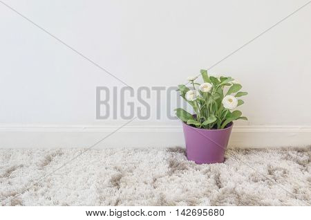 Closeup artificial plant with white flower in purple pot on blurred gray carpet and white cement wall textured background under window light