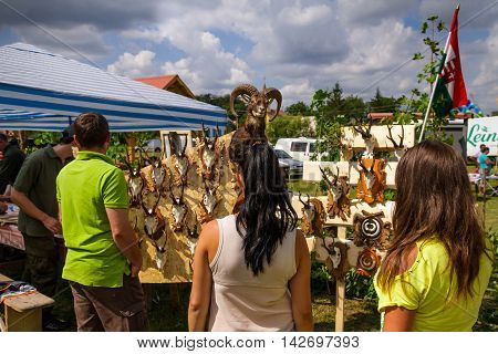 Perekhrest Ukraine - August 14. 2016: Visitors view trophies during the first festival of hunters.