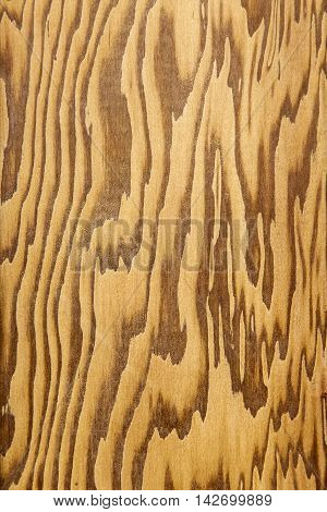 Close up of pitch pine wood showing patterns and colours
