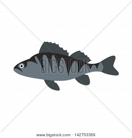 Perch icon in flat style isolated on white background. Sea creatures symbol