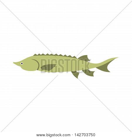 Stellate icon in flat style isolated on white background. Sea creatures symbol