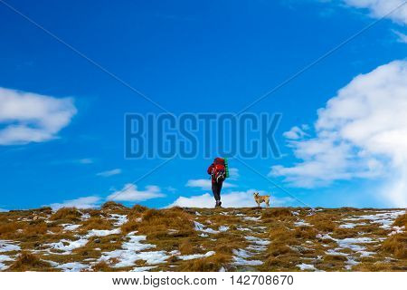Man Hiker with Backpack red Jacket walking up small Dog following him approach Peak Top Grass some snow copy space filled by blue Sky Clouds