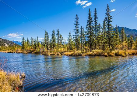 Beautiful Lake Vermilion in the mountains of Banff National Park. Autumn forest, mountains and lakes. The Canadian province of Alberta. Concept of active tourism and ecotourism
