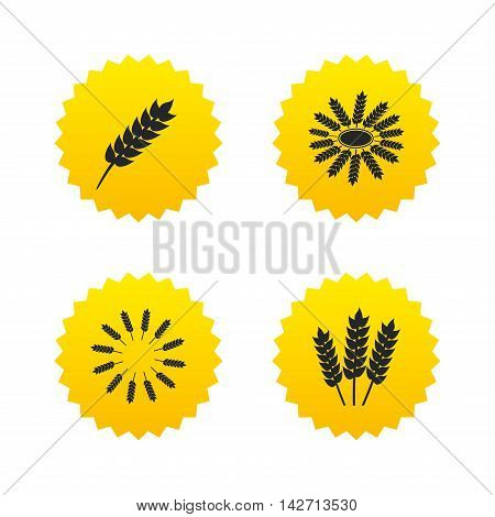 Agricultural icons. Gluten free or No gluten signs. Wreath of Wheat corn symbol. Yellow stars labels with flat icons. Vector