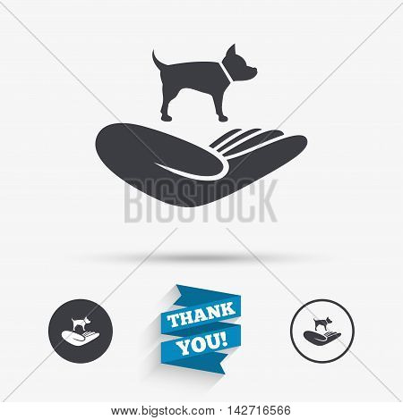 Shelter pets sign icon. Hand holds dog symbol. Animal protection. Flat icons. Buttons with icons. Thank you ribbon. Vector