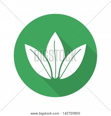 Tea leaves flat design long shadow icon. Apothecary herbs. Herbal medicine. Green tea shop emblem. Vector silhouette symbol