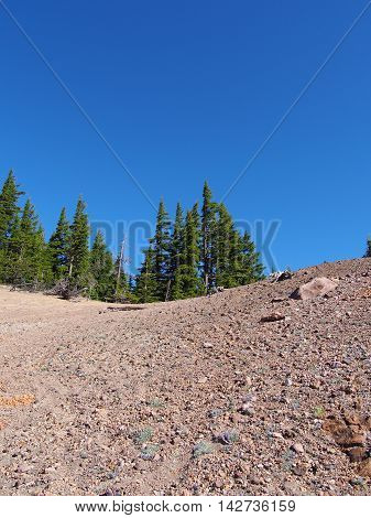 Vibrant trees grow on top of a rocky hill in Crater Lake National Park.