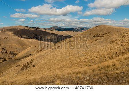parched hills in Marlborough region in New Zealand
