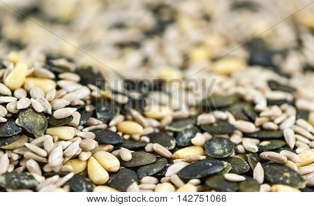 Portion of mixed Seeds (selective focus) for use as background image or as texture